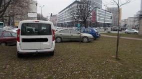 Straż miejska walczy z kierowcami parkującymi auta na trawnikach