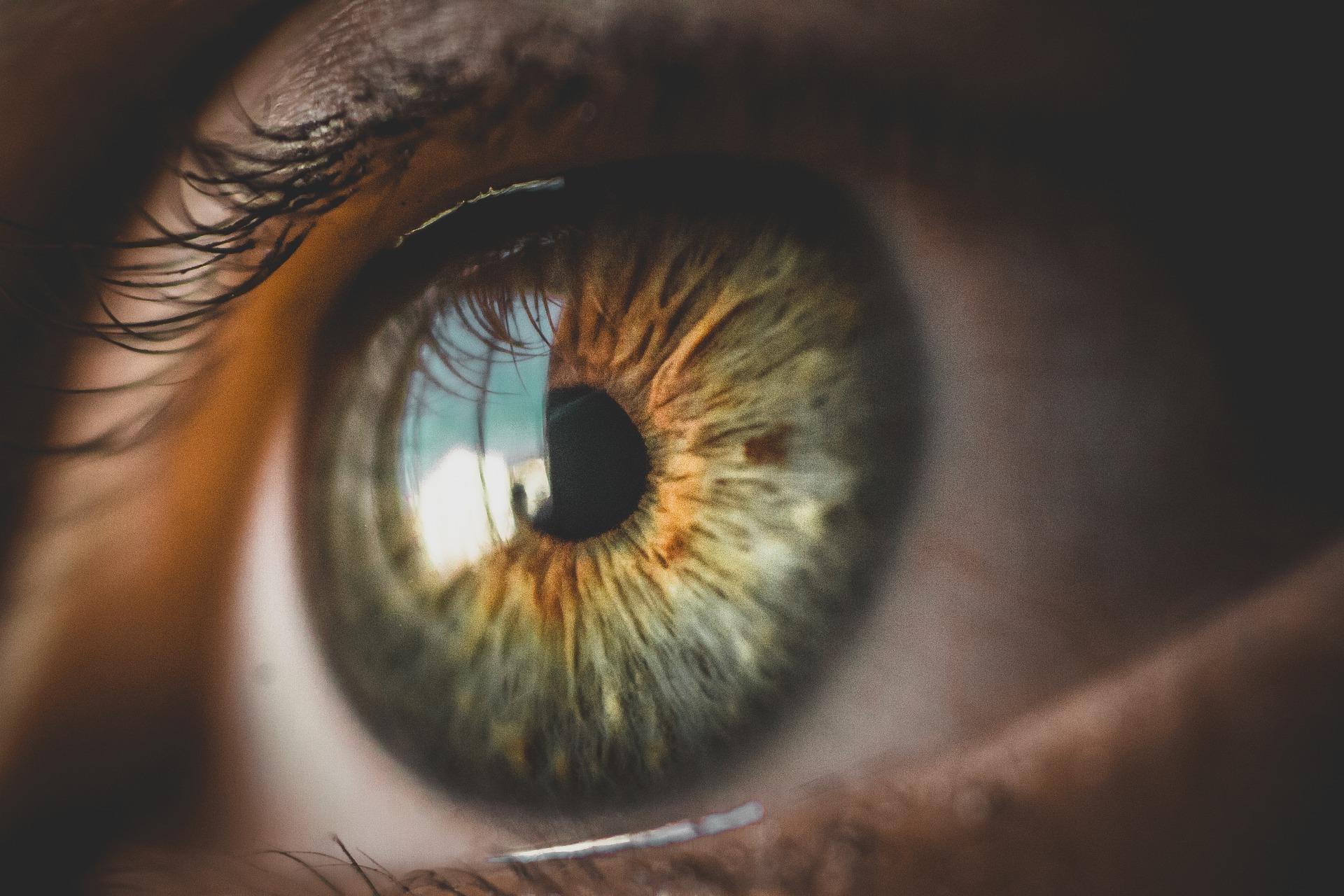 Lysas segített visszanyerni a látást
