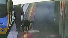 Groza w metrze. Film z upadku mężczyzny na tory