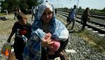 Predsednica Hrvatske sazvala sednicu zbog nekontrolisanog ulaska izbeglica