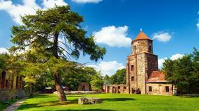 Z ruiny w centrum kultury, czyli historia zamku w Toszku