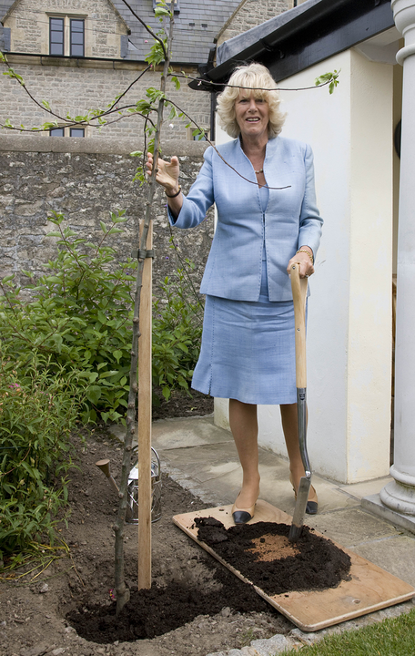 Kertészkedés kosztümben!