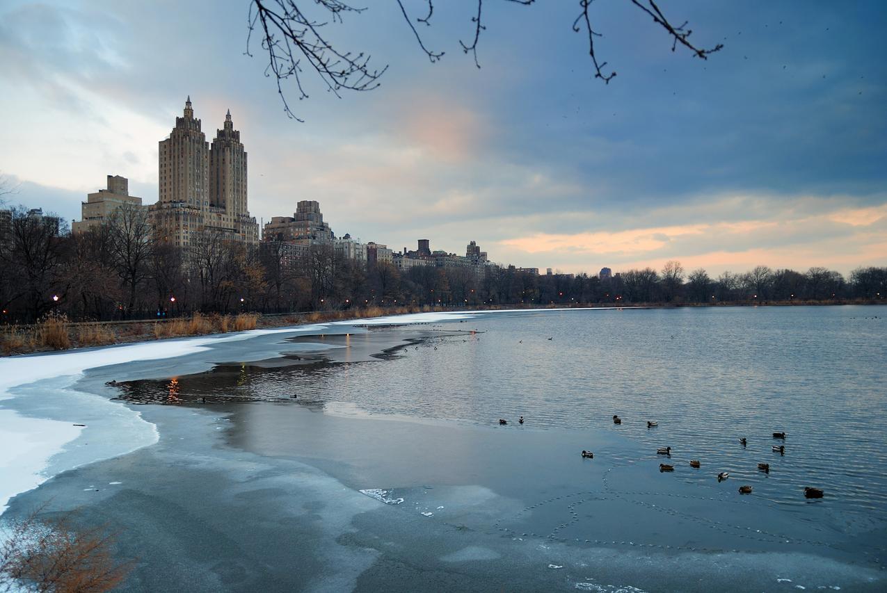 Central Park zimą