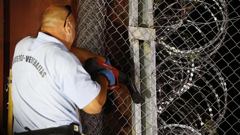 A büntetés-végrehajtás feladata a migránsok által okozott károk javítása /Fotó: Fuszek Gábor