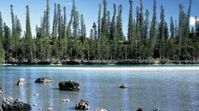 Nowa Kaledonia - Ile des Pins
