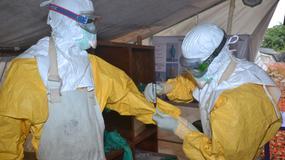 WHO: dwa razy mniej ludzi umiera na malarię niż w 2000 r., ale ebola może to zmienić