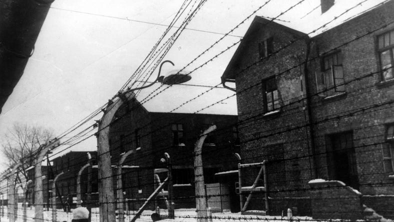 Milliók vesztek oda Auschwitzban /fotó: Northfoto