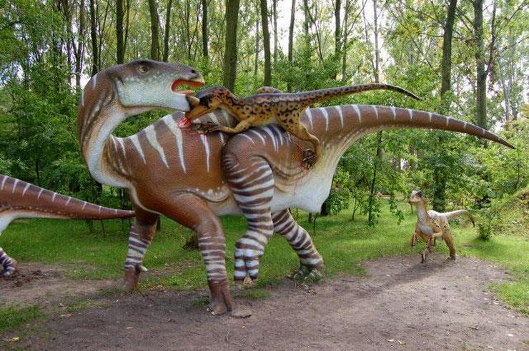 Park dinozaurów rogowo