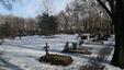 A Fiumei úti sírkert 41-es művészparcellája, ahol  Kerényi Imre, Makk Károly és Jancsó Miklós rendezők sírhelye van.