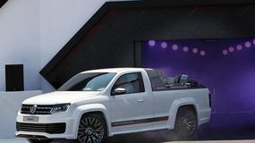 Volkswagen Amarok Power Pickup Truck nad jeziorem