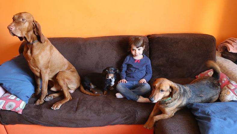 Esztert a család mindhárom kutyája, Dömcsi (balról), Agóra és Csoki is imádja /Fotó: Isza Ferenc