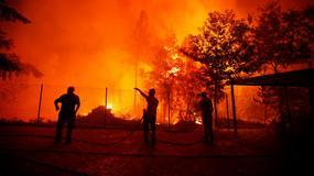 Pożary lasów w Portugalii. Wysokie temperatury utrudniają gaszenie