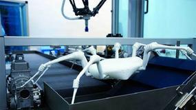 Spiderbot wtargnie do najbardziej niedostępnych miejsc, również koszmarów