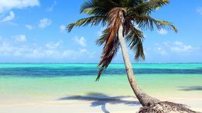 Dominikana - największe atrakcje. Przewodnik po rajskiej, wakacyjnej wyspie