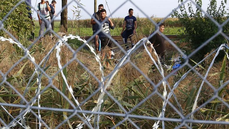 Bakondi szerint a kerítés átvágására alkalmas eszközöket kapnak a migránsok /Fotó: Fuszek Gábor