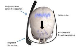 Nasza czaszka systemem autoryzacji