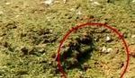 Indija: Meteorit ubio čoveka, ranio troje