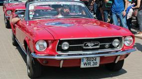 Stado Mustangów na Placu Defilad