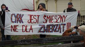Zielona Góra: protest przeciwko widowiskom cyrkowym z udziałem zwierząt