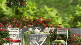 Jak z małego balkonu zrobić mały ogród?