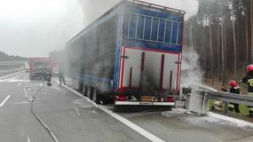 Pożar samochodu ciężarowego z ptactwem na A2