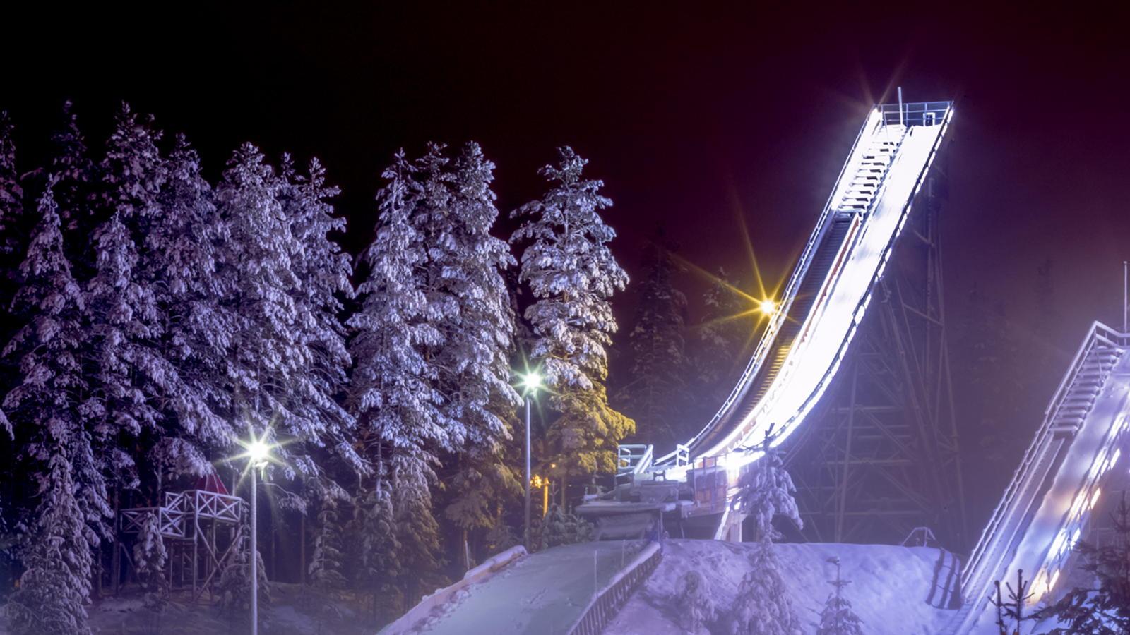 Jeśli nie Ulitmate Ski Jumping to co?