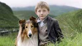 Premiery tygodnia: Lassie wraca