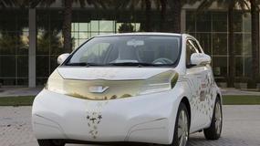 Najazd ekologicznych aut na Paryż