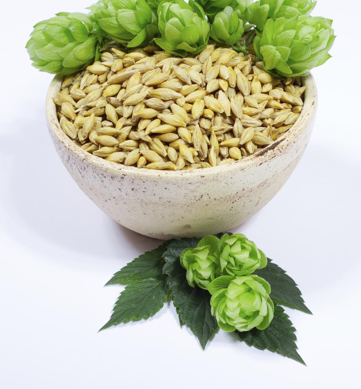 Dietetyczne odkrycia: zielony jęczmień