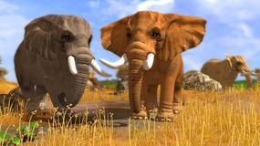 """Premiera gry """"Wildlife Park 3: Świat dzikich zwierząt"""""""