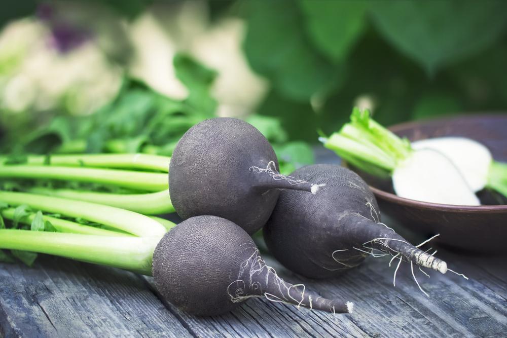 Fekete retek magas vérnyomás ellen Pin on egészség