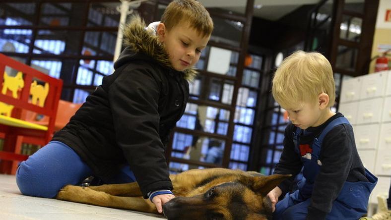 Rexet szerették a gyerekek /Fotó: MTI - Kovács Tamás