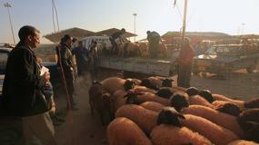 Libia przed świętem Eid Al Adha