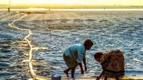 Wybrano najpiękniejsze zdjęcia prezentujące zagadnienia ochrony środowiska i kwestii społecznych