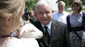 Prezes PiS w gospodarstwie rolnym