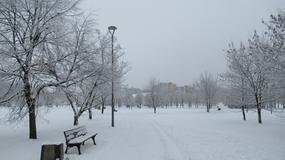 Opole: zima zachwyca, ale nie kierowców