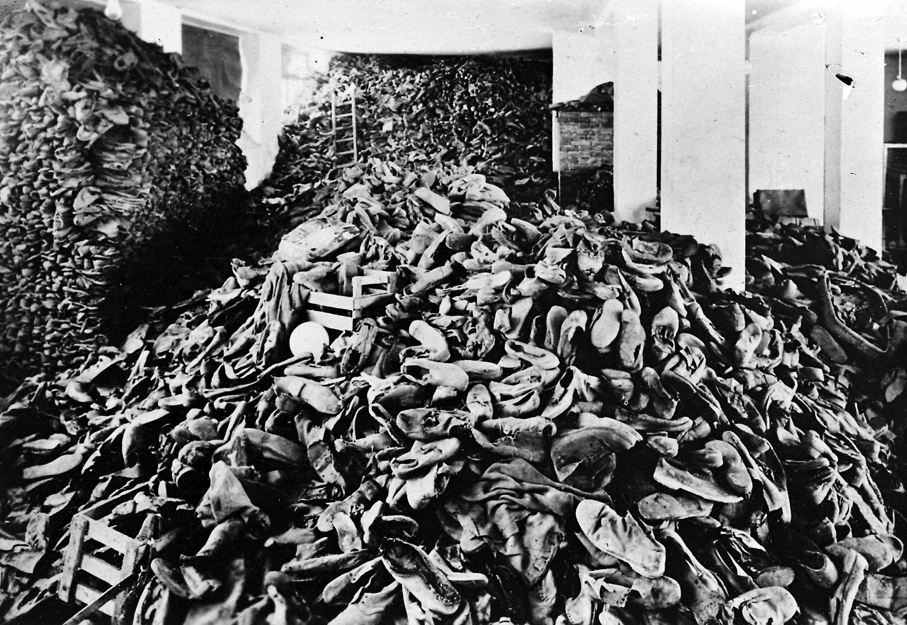 Auschwitz Ihmiskokeet