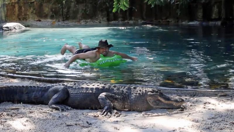 fürdés aligátorkkal - Fotó: Profimedia-Reddot