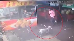 Chciał uderzyć bezbronnego psa. Dostał to, na co zasłużył? [WIDEO]
