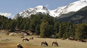 USA - park narodowy Gór Skalistych