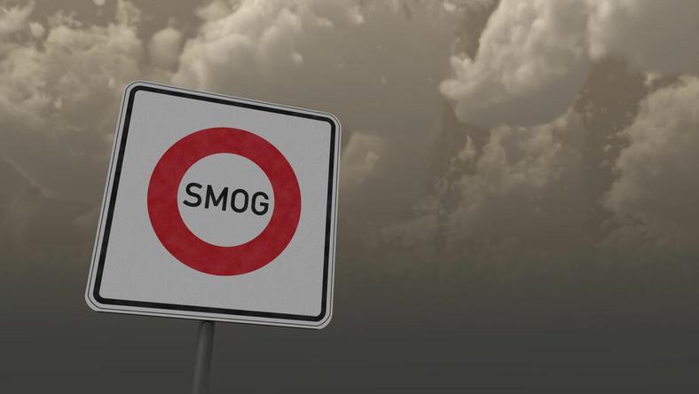 Csökkenthető lenne a levegő szennyezettsége / Fotó: Northfoto