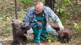 W zoo znaleźli przyjaciela dla samotnej niedźwiedzicy