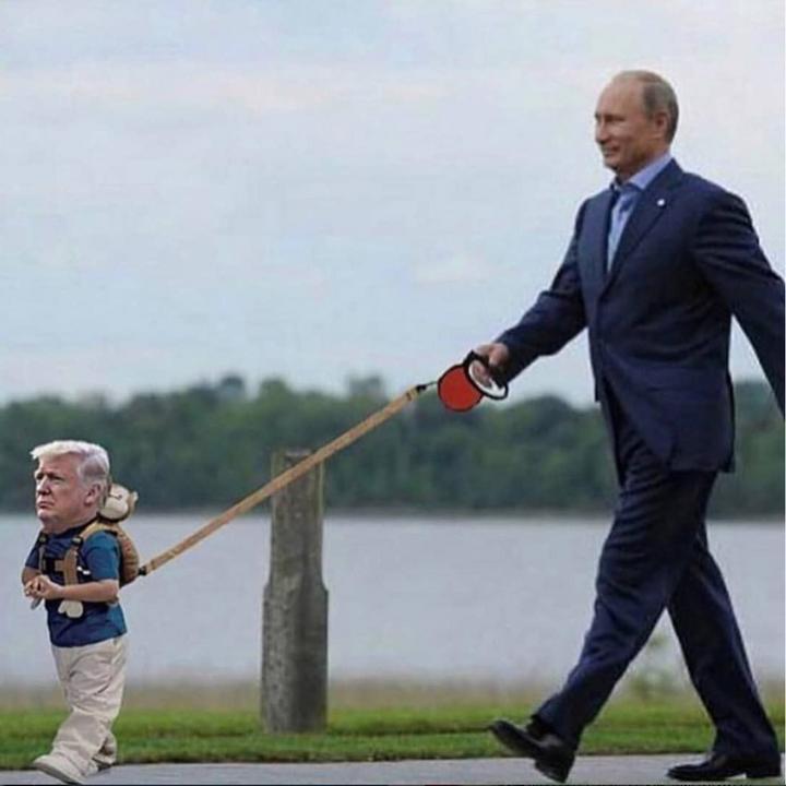 Putyin pórázon sétáltatja a kisfiús Trumpot /Fotó: Twitter
