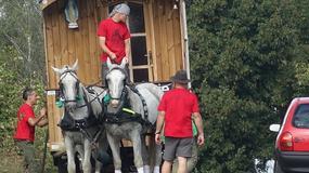 """Poranione konie ciągnęły Karawan Bożego Miłosierdzia. """"Pielgrzymi modlili się, aby te zdjęcia nie wyszły"""""""