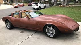 Rodzinna Corvette z 1979? To nie żart!