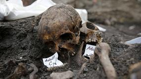 Wielka Brytania: 3 tys. szkieletów na placu budowy dworca