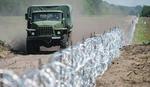 Vojvodinašume: Opasno ugrožena divljač u lovištu zbog mađarske žice