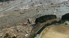 Miasto zmiecione przez tsunami