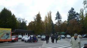 Wszystkich Świętych: jak dojechać na cmentarze w Opolu?