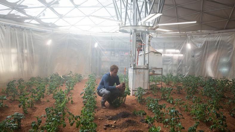 Matt Damon is próbálkozott a Mentőexpedíció című filmben a marsi növénytermesztéssel. /Fotó: Northfoto